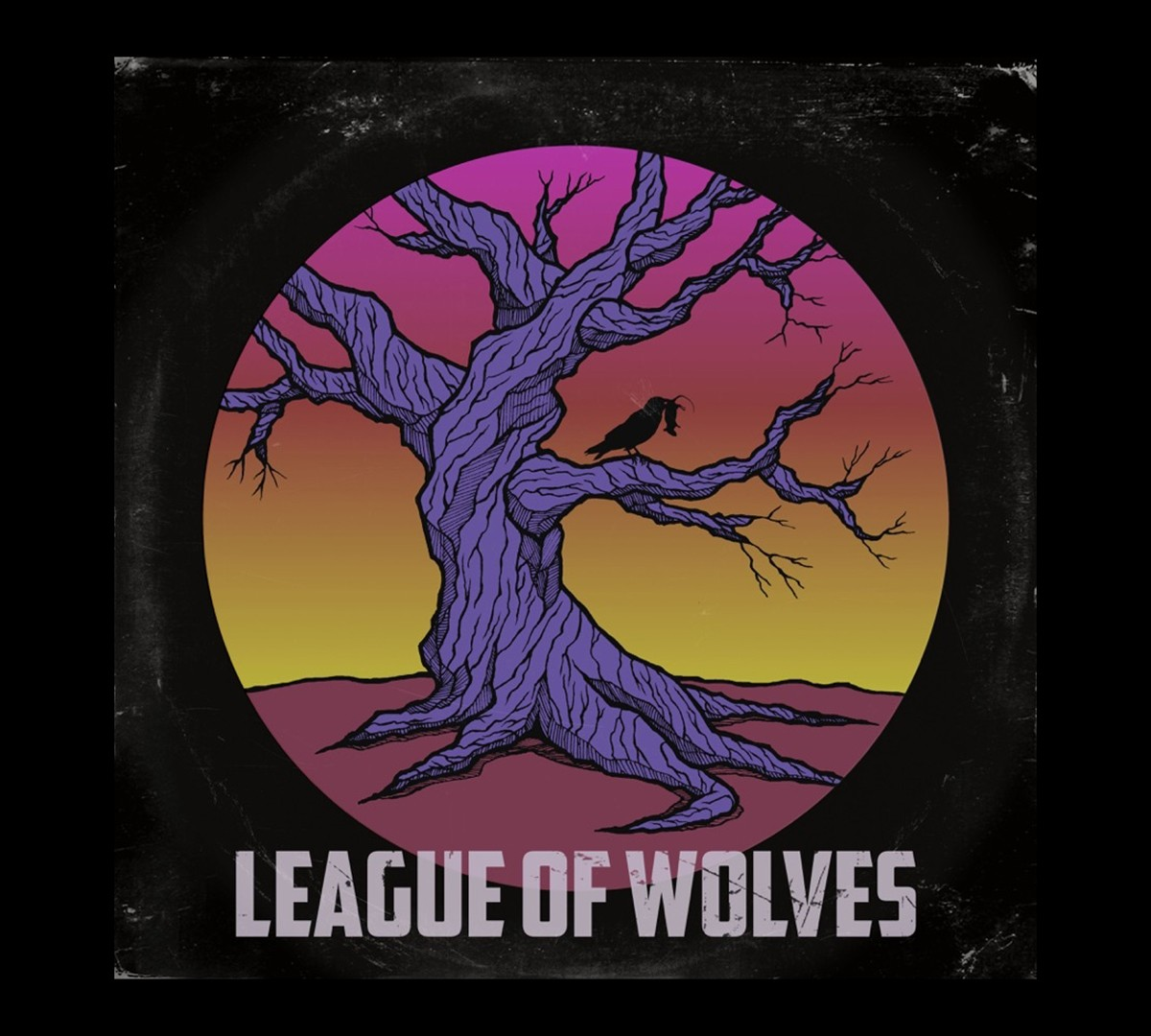 Former Sheepdog Lends Credibility To League Of Wolves